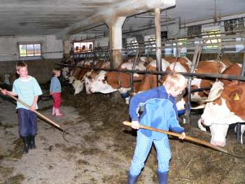 Urlaub auf dem Bauernhof im Landkreis Regen