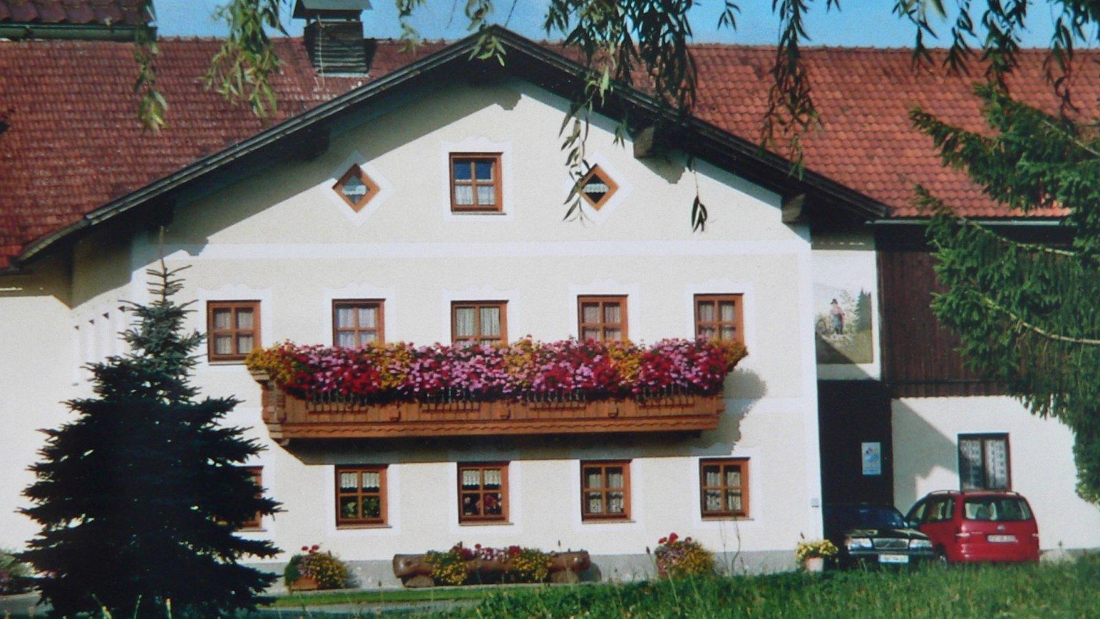 kopp-ferienhof-bauernhofurlaub-bodenmais-ansicht-16-9-1600