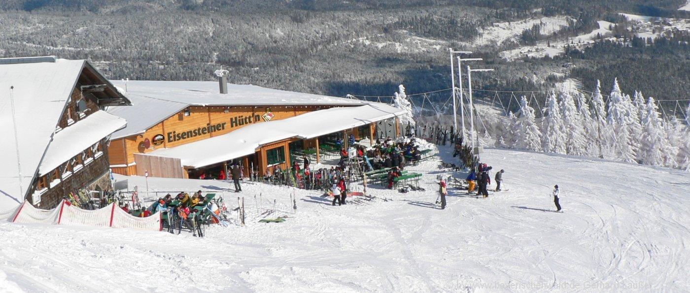 Bayerischer Wald Winterurlaub mit Skifahren